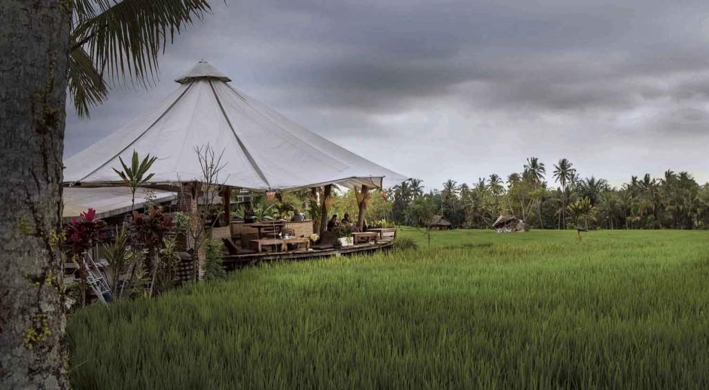 Restaurant i Udud Ricemarker_2